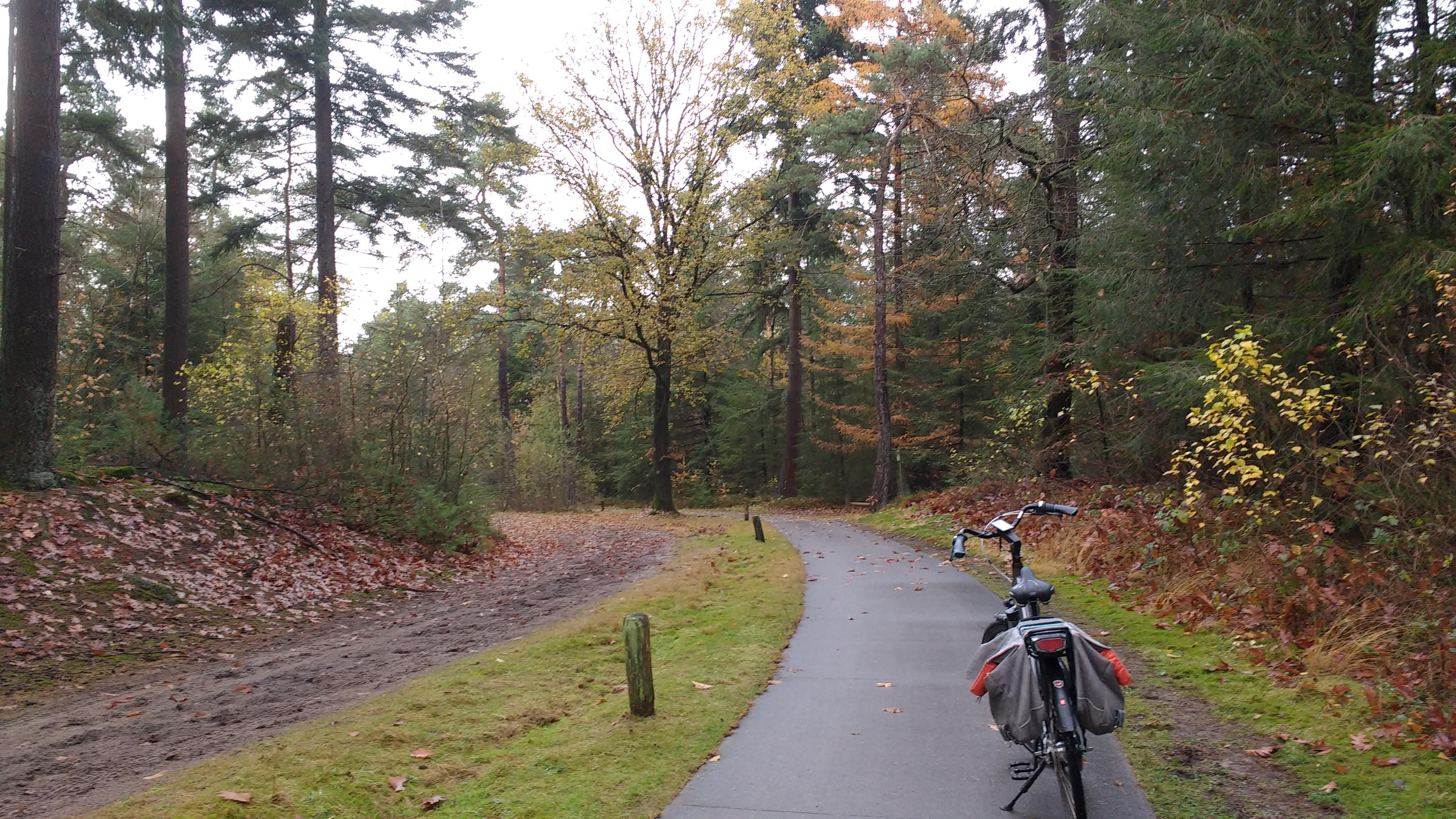 Mooi aangelegde fietspaden door de bossen